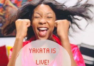 Yakata bundles of Joy